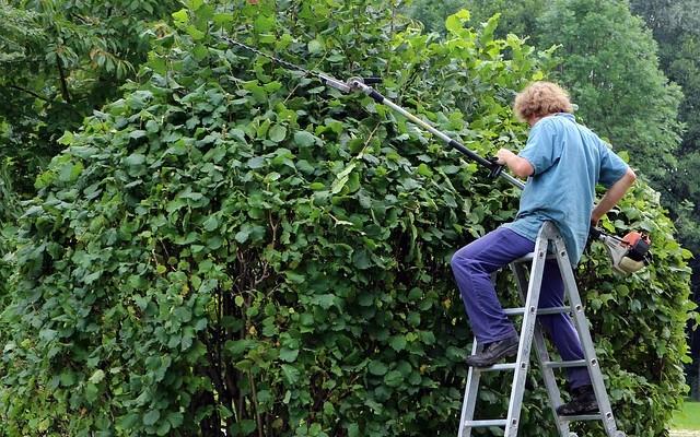 Winterklaar Maken Tuin : Een tuin winterklaar maken u rondtuinen